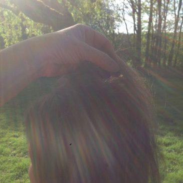 Regenbogen-Haar